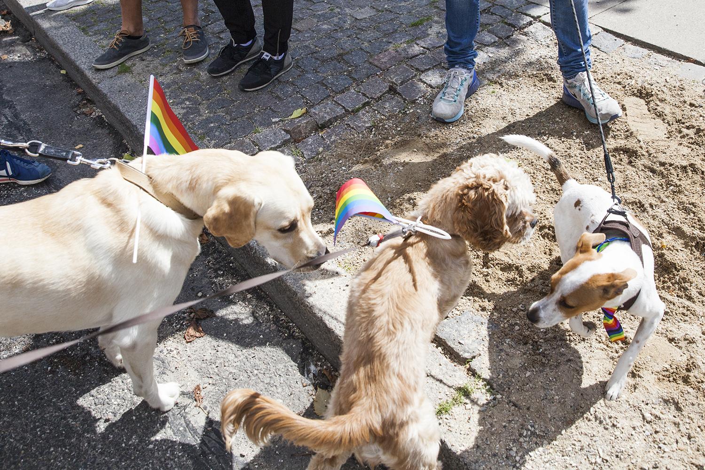 CopenhagenPride2017_HelenaLundquist_61