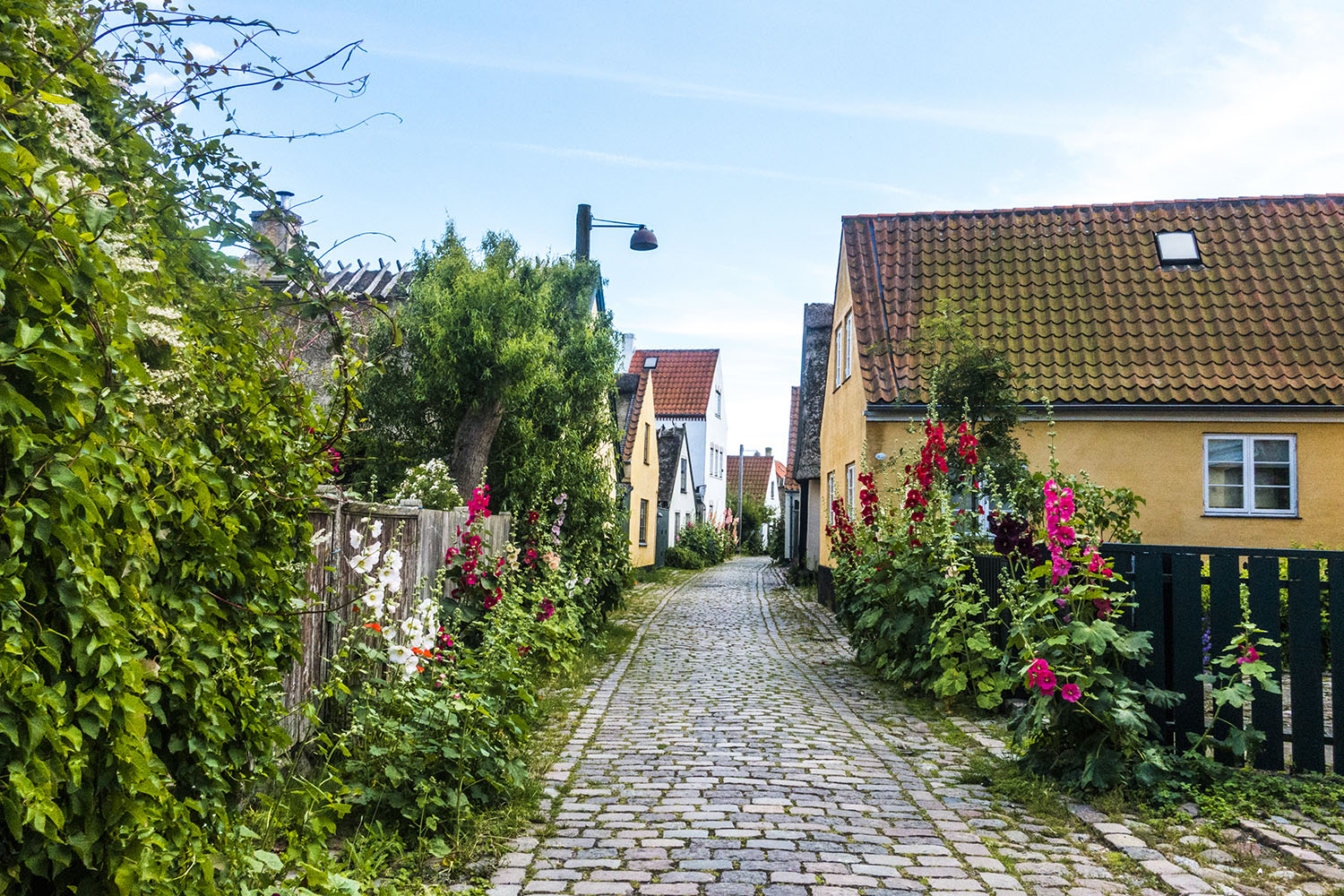 Dragør_130717_HelenaLundquist_9.small