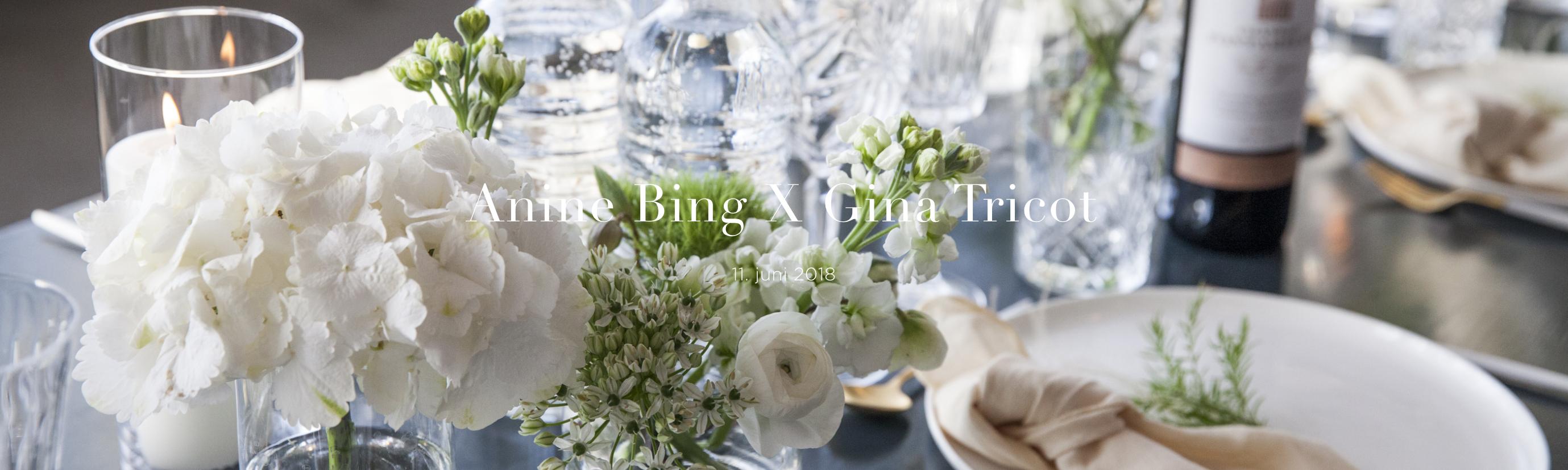 AnineBingXGinaTricotdinner_SocialZoo_HelenaLundquist_banner